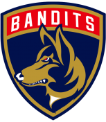 THE OTTAWA BANDITS HOCKEY CLUB